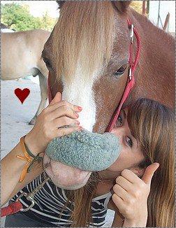 Qui aurais pu croire, qu'un jour, un simple poney puisse changer ma vie ?   ♥  .