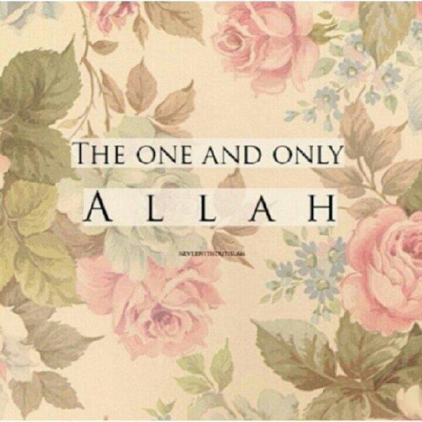 Allah ♥.