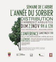 2014-11-29-TOURNAI - SEMAINE DE L'ARBRE