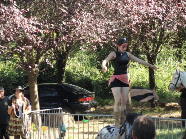 Le spectacle equestre