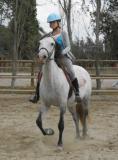 Photo de One-horse-x3