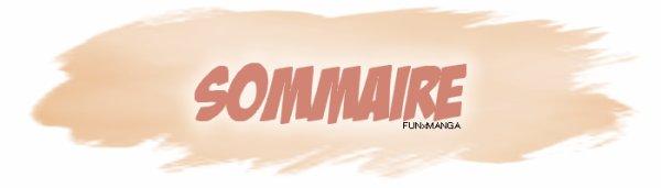 • • •Sommaire & Newsletter • • •  公明正大に質問で