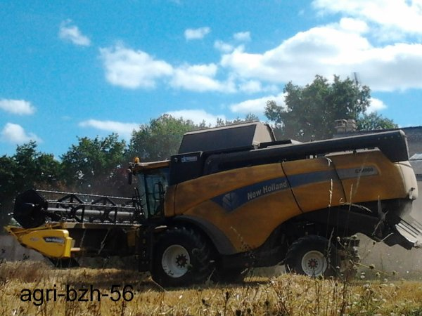 Moisson avec new holland cx 8060