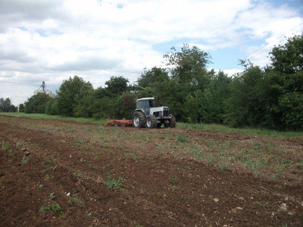 tracteur white