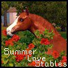 Summer-Love-Stables