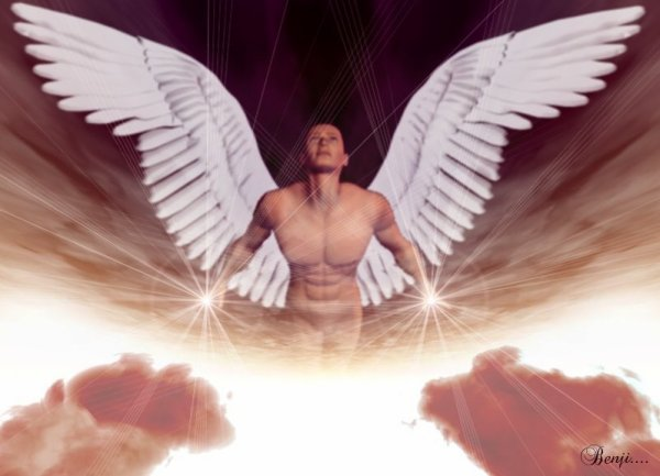 (l) (l) CA FAIT 1 AN QUE TU ES AU PARADIS DES ANGES (12/04) (l) (l)