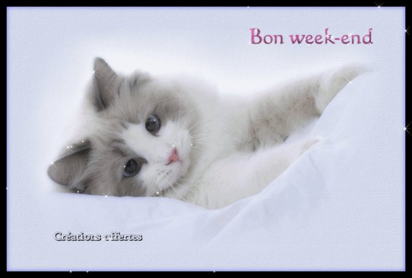 (l) (l) UN BON WEEK END MES AMIS(ES) (l) (l)