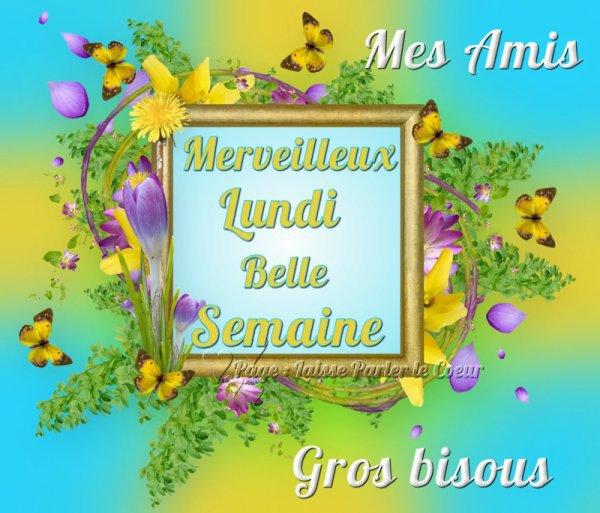 (l) (l) BELLE SEMAINE DE SOLEIL (l) (l)