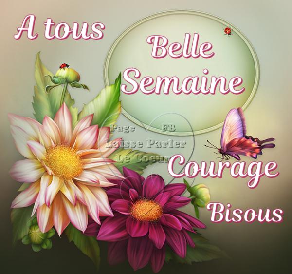 (l) (l) BELLE SEMAINE (l) (l)