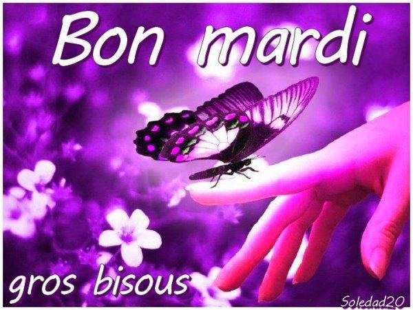 (l) (l) TRES BON MARDI (l) (l)