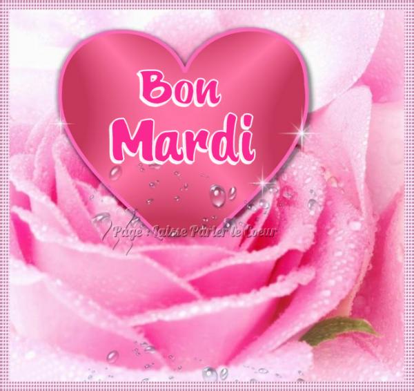 (l) (l) MERVEILLEUX MARDI (l) (l)