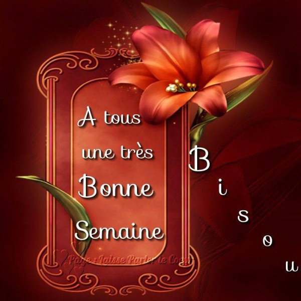 (l) (l) TRES BONNE SEMAINE (l) (l)