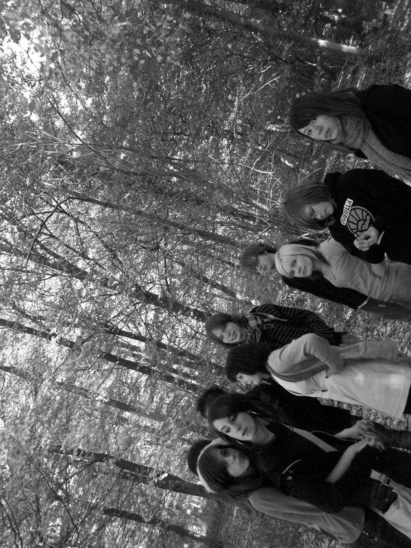 Un simple dimanche en forêt