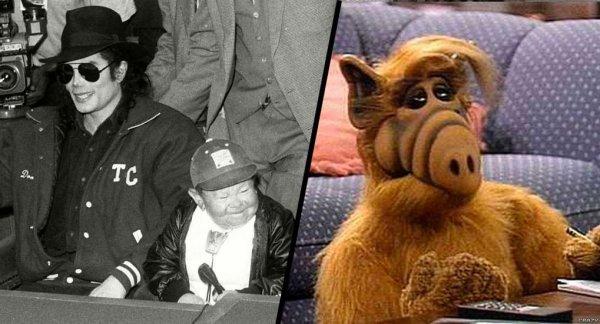 Alf : mort de Michu Meszaros, l'acteur qui incarnait l'extraterrestre