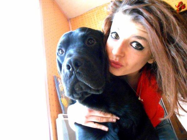Un chien n'est pas qu'un simple animal c'est un ami