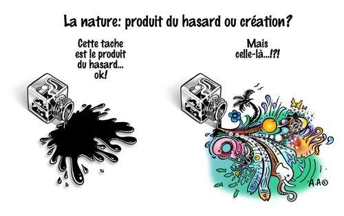La nature: produit du hasard ou création