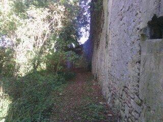église nérovingienne(?) en ruines