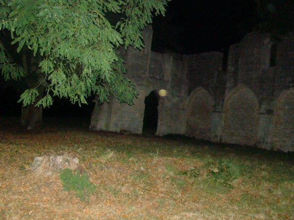 Un bel orbe pris a l'église en ruines