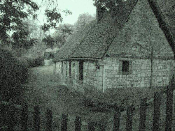 Petite visite de nuit dans les bois qui entourent l'abbaye de mortemer