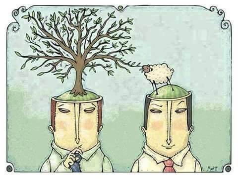 une  image qui  explique les actions des  autres