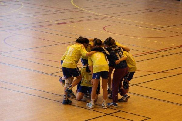 Handball, bien plus qu'une simple passion ! ♥