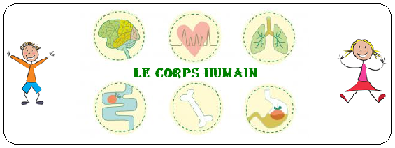 Le Corps Humain _ PRENDRE SOIN DE SON CORPS : 10 CONSEILS