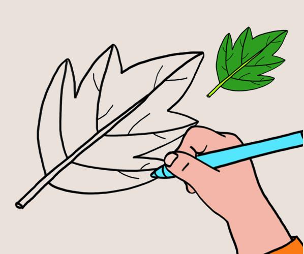 Apprendre à dessiner une feuille en 3 étapes