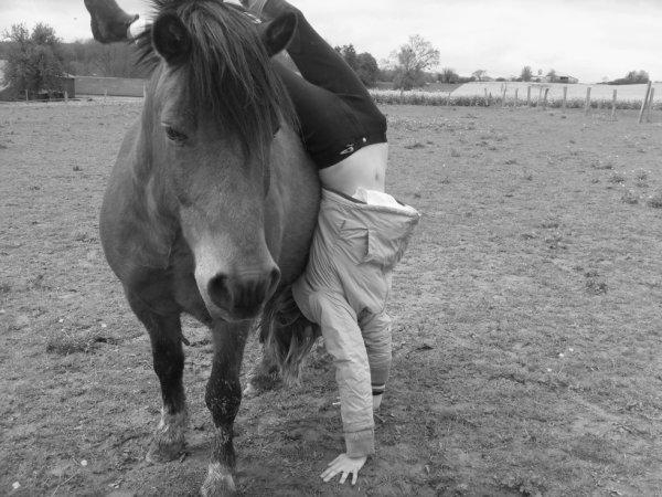 La plus belle chose qui soit c'est la confiance entre un cavalier et son cheval
