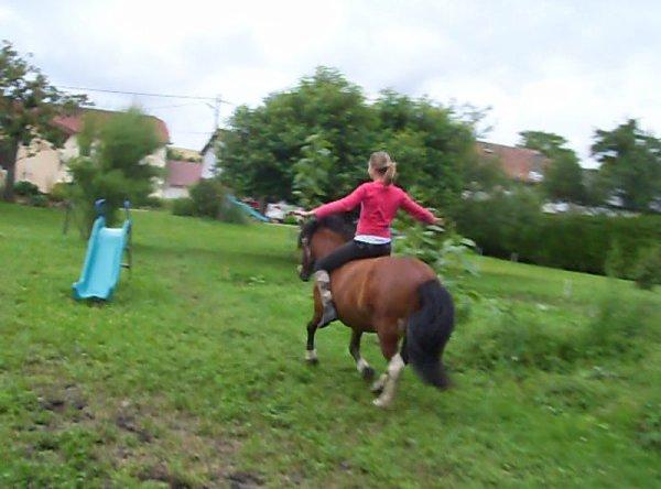 Mon poney :)