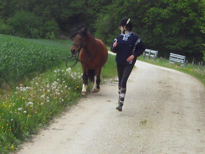 Le Poney De Toute Ma Vie♥...