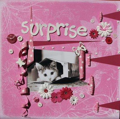 Surprise , surprise !!!!!