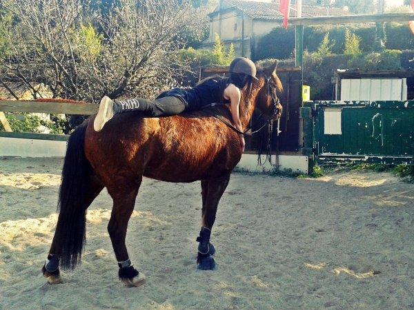 C'est un poney magique, pas étonnant qu'elle puisse voler!
