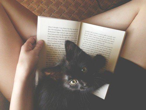 La vie est un livre merveilleux