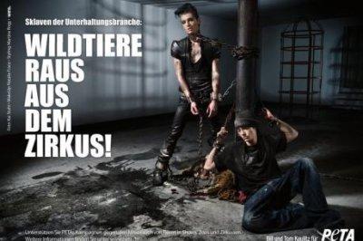 News sur Tokio Hotel  et Alice Nine + Harry Potter 7 : Les Reliques de la Mort Première partie.