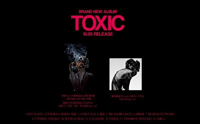 New look de the GazettE et pochettes de TOXIC.