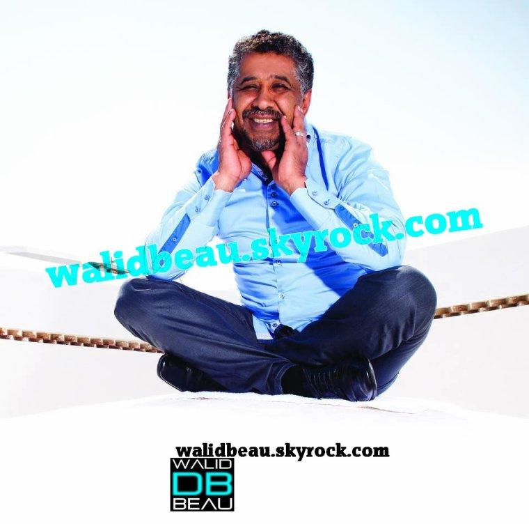 Album Khaled 2012 / 11 Wili Wili (2012)