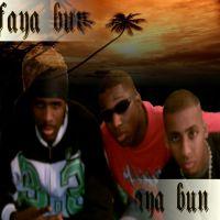 ragga/dancehall/ hip hop / Djelow-Stylez Faya Bun (2007)