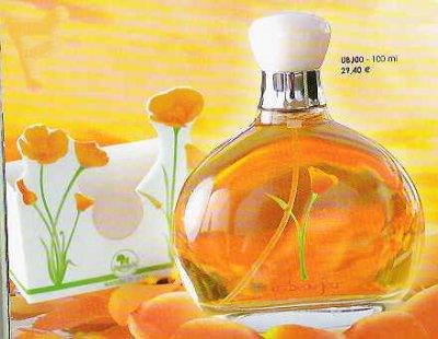 Parfum Un Beau Jour de Frederic M