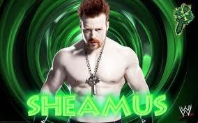 2 top Superstars de retour au Royal Rumble 2014 ?