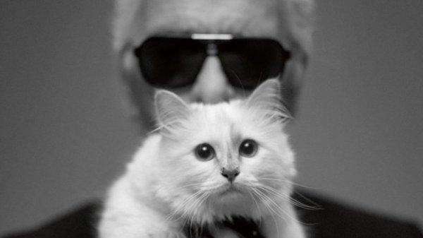 ♥ Hommage à Karl Lagerfeld - R.I.P. ♥