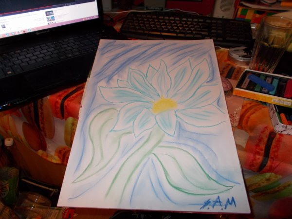 fleur 5 (un peut raté)