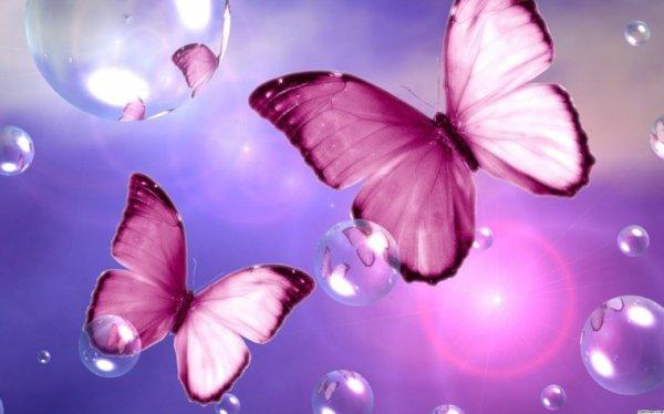Ma Butterfly