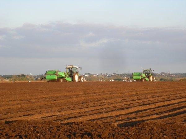 Tamisage avant plantation de pommes de terre anto29260 - Planter des pommes de terre ...