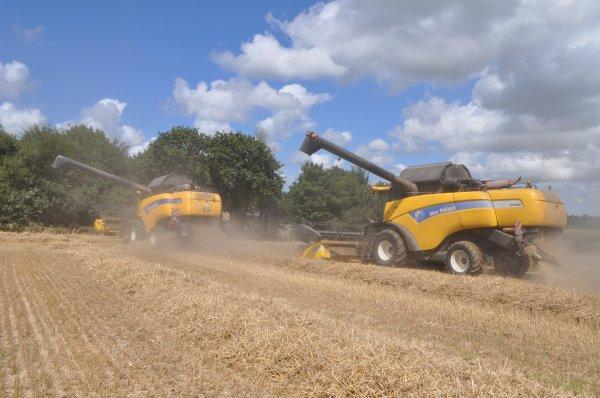 Moisson de blé dans le 29 nord !!!