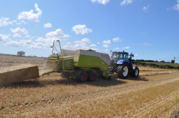 Moisson de blé 2014 (pressage)