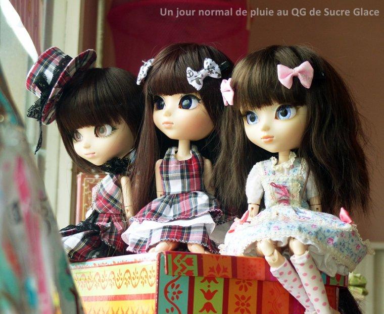 Calendrier de l'Avent Sucre Glace 2015 - 22 Décembre - Trio sadique
