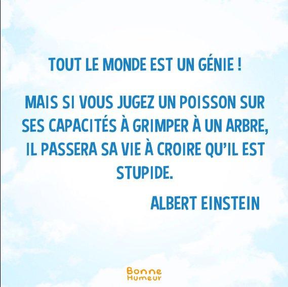 Tout le monde est un génie...
