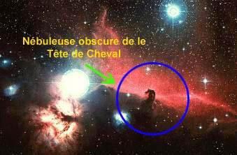 Nébuleusee de la Tête de Cheval ( NÉBULEUSES OBSCURES )