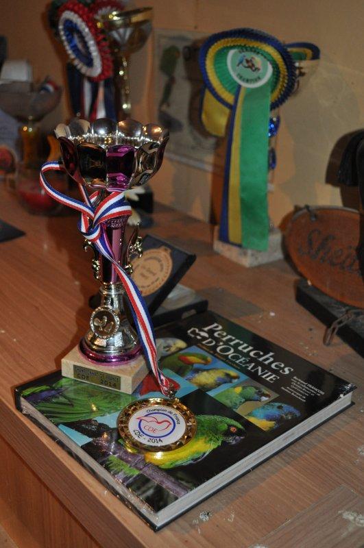 Championnat de France CDE Chantonnay