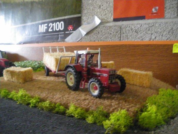 champ de blé en relief